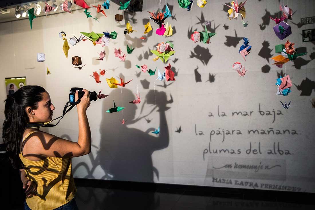 Muestra Multimedia. Homenaje a Ma. Laura Fernández.